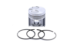 Set Piston+segmenti Std Perkins # 115017491